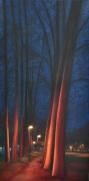 Allée rouge, huile, 20x40 cm