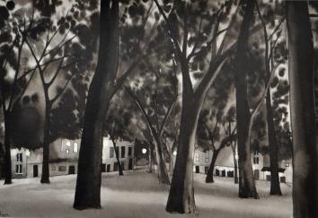 Salut des platanes encre Jardin de Ville Grenoble